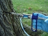 Arborjet - Tree Injection Technology -