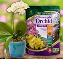 Better Gro (Sun Bulb) -- Orchid Supplies