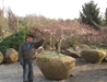 Water Crest Farms Nursery @ MANTS -
